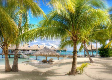 Пляжи и пальмы